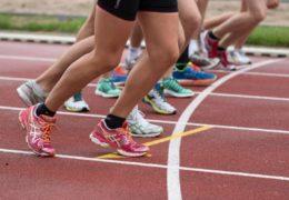 Węglowodany w diecie sportowca  w jakim celu ?